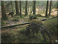SD3492 : 'Wild Boar Clearing', a sculpture at Grizedale Forest by Karl and Ali
