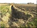 SO9143 : Farmland ditch by Philip Halling