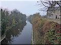 SE4923 : Aire & Calder Navigation, Knottingley by Chris Allen