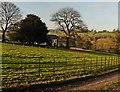 ST3808 : Purtington House Farm by Roger Cornfoot