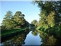 SJ5747 : Llangollen Canal, looking westwards by Christine Johnstone