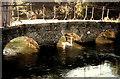 SP1106 : Footbridge over River Coln by norman hyett