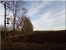 TG0723 : Farmland off Kerdiston Road by Adrian Cable