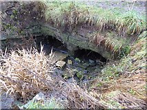 SO8845 : Water culvert by Philip Halling