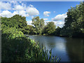 SP2965 : River Avon to the rear of Pickard Street, southeast Warwick by Robin Stott