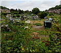 ST3388 : West side of East Grove Road Allotments, Newport by Jaggery