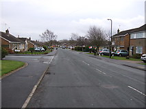 SE2853 : Beckwith Road by JThomas