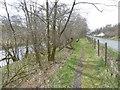NS6127 : River Ayr Way by Richard Webb