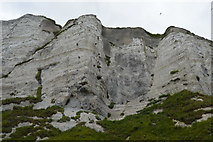 TR3241 : White Cliffs of Dover by N Chadwick