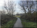 TQ5485 : The London LOOP in Hornchurch Country Park by Marathon