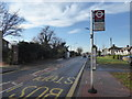 TQ5382 : Upminster Road North by Marathon