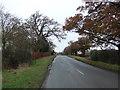 SJ5161 : Church Lane, Huxley by JThomas
