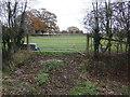 SJ5062 : Field entrance off the Leadgate Lane by JThomas