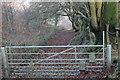 SO2001 : Step-over stile on gate below Pen-y-fan-fach by M J Roscoe