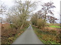 SJ4025 : Lane from Limpit Hill to Bromley Hall by Peter Wood