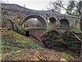 NJ4462 : Craigmin Bridge by valenta