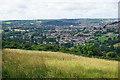 ST7667 : Hillside above Lower Swainswick by Bill Boaden