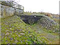 NY9265 : Sluice on Kingshaw Haugh by Oliver Dixon