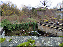 NS2776 : Aqueduct at Greenock West railway station by Thomas Nugent