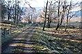 NN8447 : Track from Dunskiag by Jim Barton