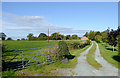 SJ5847 : Farm driveway near Wrenbury in Cheshire by Roger  Kidd