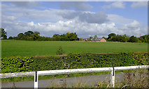 SJ5847 : Farmland north-west of Wrenbury in Cheshire by Roger  Kidd