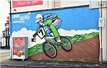 J3573 : Mural, Ravenhill Road, Belfast (December 2016) by Albert Bridge