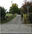 SJ6650 : Mill Lane, Stapeley by Jaggery