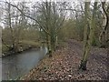 SE4003 : Path alongside the River Dove by Steve  Fareham