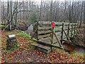 NH8753 : Footbridge over the Geddes Burn by valenta