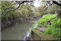SP3576 : Looking upstream on the River Sowe past Willenhall, southeast Coventry by Robin Stott