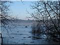 SJ5570 : Frozen mere at Delamere by Stephen Craven
