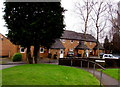 ST3091 : Evergreen and deciduous trees at the northern edge of Larch Court, Malpas, Newport by Jaggery