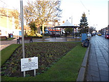 TM3034 : Flowerbeds between Hamilton and Crescent Roads by Basher Eyre