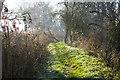 TM4492 : Worlingham Wall on a frosty day by Roger Jones
