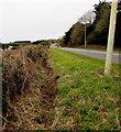 SS8578 : Shallow trench alongside Bridgend Road, Porthcawl by Jaggery
