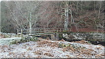 NY9449 : Footbridge over the River Derwent downstream of Gibraltar Banks by Clive Nicholson