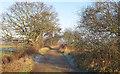 TM4491 : Marsh Lane, Worlingham by Roger Jones