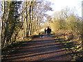 SO8694 : Crowded Path by Gordon Griffiths