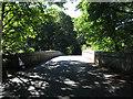 SX8088 : Steps Bridge near Dunsford by Stephen Craven