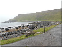 C9444 : The Giant's Causeway from Port Ganny (1) by David Hillas