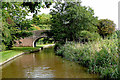 SJ5139 : Old Man's Bridge near Fenn's Bank in Shropshire by Roger  Kidd