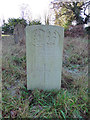 TM0389 : The CWGC Headstone of Private William Arthur Palgrave by Adrian S Pye