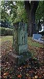 SD4161 : Heysham - St Peter's Church - ancient cross shaft in churchyard by Colin Park