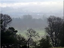 NZ1265 : Misty morning in Tyne valley by Andrew Curtis