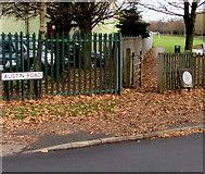 SO9568 : Queen Elizabeth II Field entrance, Bromsgrove by Jaggery