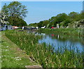 SK8435 : Woolsthorpe Bottom Lock No.16 along the Grantham Canal by Mat Fascione