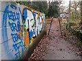 SZ1492 : Tuckton: graffiti on footpath I23 by Chris Downer