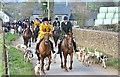 ST7991 : Beaufort & Berkeley Hunts Jt Meet, Tresham, Gloucestershire 2016 by Ray Bird