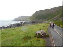 C9444 : The Giant's Causeway from Port Ganny (2) by David Hillas
